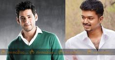 The latest is that the team has reportedly approached #Vijay and #MaheshBab to play the lead in the Tamil and Telugu versions respectively.