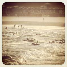 Bondi Satin Surf #atbondi #bondi #australia #sydney #surf #waves #beach Bondi Australia, Bondi Beach, Sydney, Surfing, Wanderlust, Waves, Satin, Explore, Random