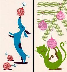 Perro y gato juguetones