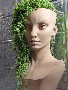 43 Super Ideas For Succulent Garden Ideas Head Planters Face Planters, Garden Planters, Planting Succulents, Garden Crafts, Garden Projects, Air Plants, Indoor Plants, Potted Plants, Plant Decor