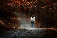 Christos Lamprianidis - Google+ - Autumn - Nimfaio Greece #photography  #greece …