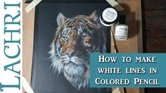 How to get white lines and details in colored pencil - real time drawing...