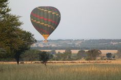 What a better way to have a vacation than hot air ballooning above a wildlife-infested savannah and experiencing once-in-a-lifetime adventures like getting close to wild animals you can only see in National Geographic Channel. Honeymoon Getaways, Safari Wedding, Game Lodge, Plunge Pool, Game Reserve, African Safari, Africa Travel, Hot Air Balloon, Savannah Chat
