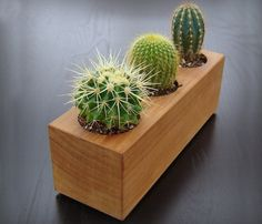 Wood Succulent Planter.  So cute!