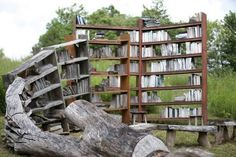 Bookshelf Fashioned Out Of Fallen Trees