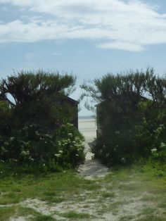 At West Wittering beach...on the grayer side    www.liberatingdivineconsciousness.com