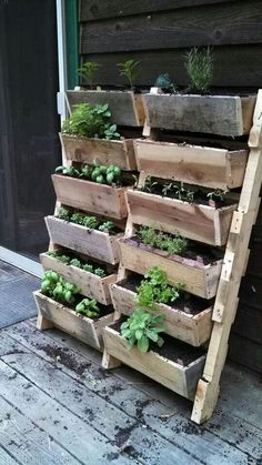 Herb garden idea , MUST HAVE THIS OUTSIDE MY KITCHEN DOOR. Perfect for cooking, just love it