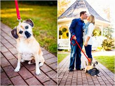 Zionsville Engagement Photography | Jenna + Matt, www.rachelrichard.com, dog