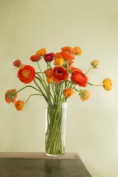 I want flowers everywhere. ranunculus