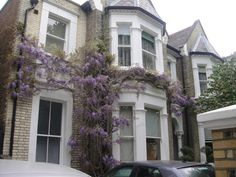 Victorian terraced house wisteria