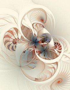 Mollusca by Amanda Moore