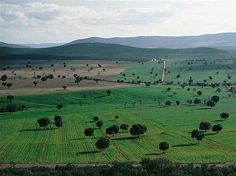 The Cabañeros National Park in Castile-La Mancha  photo: http://en.wikipedia.org/wiki/List_of_national_parks_of_Spain