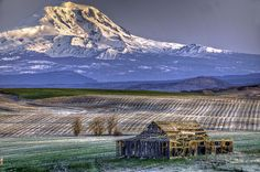 Mt Adams Goldendale by fredgarvinphotos, via Flickr