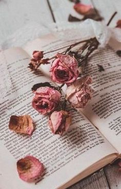 List of New Vintage Wallpapers for iPhone This Month Book Aesthetic, Flower Aesthetic, Aesthetic Vintage, Aesthetic Pictures, Book Wallpaper, Flower Phone Wallpaper, Wallpaper Backgrounds, Vintage Flower Backgrounds, Aesthetic Pastel Wallpaper