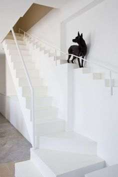 From expensive renovations to custom doggie doors, these houses were transformed for the owner's spoiled pets. Find decor ideas for your spoiled pets including pet beds and custom cat walkways. Decor Interior Design, Interior Design Living Room, Room Interior, Cat Walkway, Dog Stairs, Beautiful Stairs, Stair Decor, Modern Stairs, Staircase Design