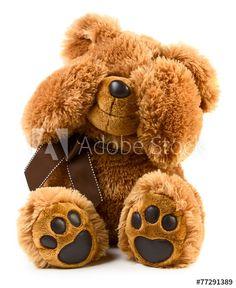 Happy Teddy Day Images, Teddy Bear Images, Teddy Bear Pictures, Teddy Bear Quotes, Teddy Bear Day, Cute Teddy Bears, Tatty Teddy, Photo Ours, Grizzly Bear Cub