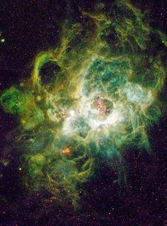 NGC 604 es una región de formación estelar situada en la galaxia del Triángulo (M33), a una distancia de 850 kilopársecs de nuestra galaxia. Fue descubierta por William Herschel el 11 de septiembre de 1784