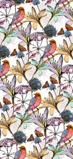 coquidv:Charlotte Duffy ~ 'Eastern Flutter'via
