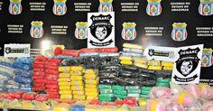 Irmãos são presos com 230 quilos de drogas em casa alugada em Manaus - Globo.com