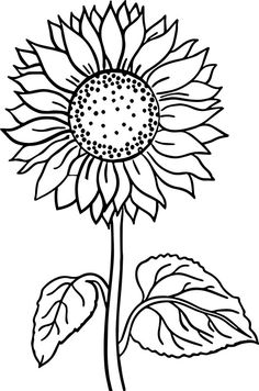 Sunflower Coloring Pages Idea sunflower coloring page free printable coloring pages Sunflower Coloring Pages. Here is Sunflower Coloring Pages Idea for you. Sunflower Coloring Pages sunflower coloring page free printable coloring page. Sunflower Coloring Pages, Printable Flower Coloring Pages, Sunflower Drawing, Free Adult Coloring Pages, Coloring Pages To Print, Coloring Book Pages, Coloring Sheets, Sunflower Tattoos, Mandala Coloring