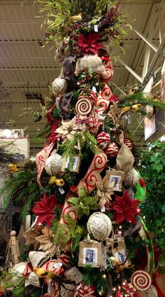 Designed By Arcadia Floral & Home Decor ARCADIA Christmas