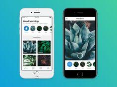 Plant Watering - Capture designed by Judah Guttmann. App Ui, User Interface, App Design, Animation, Projects, Plants, Mobile Ui, Urban, Patterns