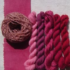 Cochineal natural dye extract – Renaissance Dyeing