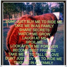 We give our family our hearts before we even know them, give a horse your heart and he will know you.