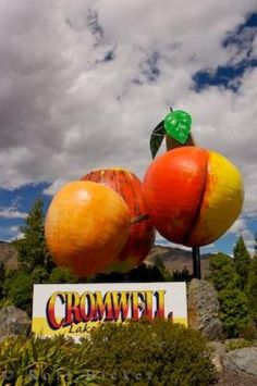 Fruit Sculpture at Entrance to the town of Cromwell in central Otago, New Zealand