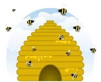 bee hive from google images