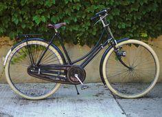 "Raleigh DL-1 Lady Tourist (Velouria)  used as: an errand bike to keep in my studio  specs: 22"" frame; 28"" wheels; Sturmey Archer S3C hub with coaster brake; rod brakes  year: 1973"