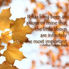 It has long been an  axiom of mine that  the little things  are uinfinitely the most important.