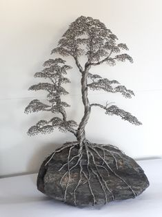 Ficus, Bonsai Wire, Wire Tree Sculpture, Wire Trees, Wire Crafts, Tree Designs, Tree Art, Tree Of Life, Metal Art