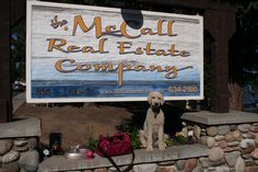 10 Tips for Moving with Pets http://mccallrealestate.com/10-tips-for-moving-to-mccall-with-pets/