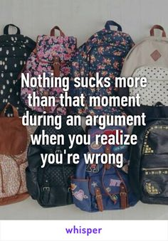Nothing sucks more than that moment during an argument when you realize you're wrong