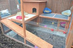 outdoor rabbit house and run