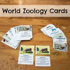 FREE World Zoology Cards (SAVE $6!) from sponsor @educents #afflink
