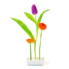 """xxd- Vase """"Florida"""" ✓"""