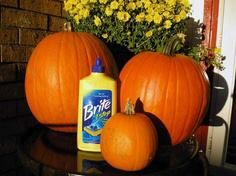 Coat your pumpkin with liquid floor cleaner, it preserves them for the whole season.