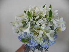 Seeded, Lilies and Seeded eucalyptus on Pinterest