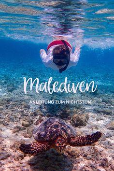 Kennt ihr das? Manchmal findet man diesen magischen Ort, wo man sich rundum wohl fühlt und am liebsten gar nicht mehr weg möchte. Moofushi-Island ist für uns so eine Location. Schon alleine der Name klingt nach weißen Sandstränden, azurblauem Meer und tropischen Fischen. Mit diesem Artikel nehmen wir euch mit auf diese bezaubernde Koralleninsel. Location, Strand, Movies, Movie Posters, Cultural Diversity, Maldives, Travel Inspiration, Travel Advice, Adventure