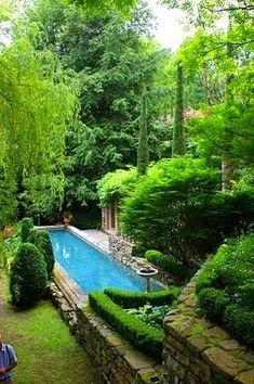 whaou - piscine toute en longueur dans un jardin