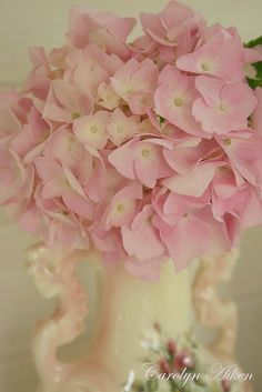 Pink Hydrangeas. table centerpiece for dining room to compliment the grey and white