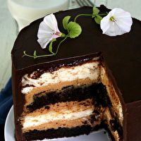 Heaven and Hell Cake by Anji Mayfield  Stuffed with Peanut Butter Mousse.    Looks so good!