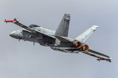 McDonnell Douglas F/A-18 Hornet, Finnish Air Force