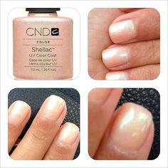 Will Blog for Beauty: Shellac Iced Coral
