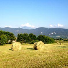 @Malosco @ValdiNon @Trentino