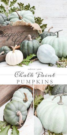 DIY Dry Brushed Chalk Painted Pumpkins Tutorial for making realistic chalk paint pumpkins for fall. Pumpkin Uses, Diy Pumpkin, White Pumpkin Decor, Pumpkin Family, Green Pumpkin, Autumn Decorating, Pumpkin Decorating, Decorating Ideas, Decor Ideas