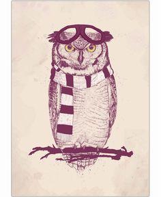 East Urban Home Poster The Aviator Owl von Mercedes Lopes Charro Canvas Art Prints, Fine Art Prints, Framed Prints, Owl Graphic, Graphic Design, Poster Online, Art Prints Online, Photoshop, Art Mural