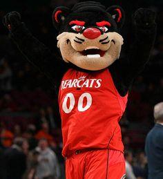 Bearcat Mascot | Bearcat - University of Cincinnati - 2010 All-Mascot Team - Photos ...